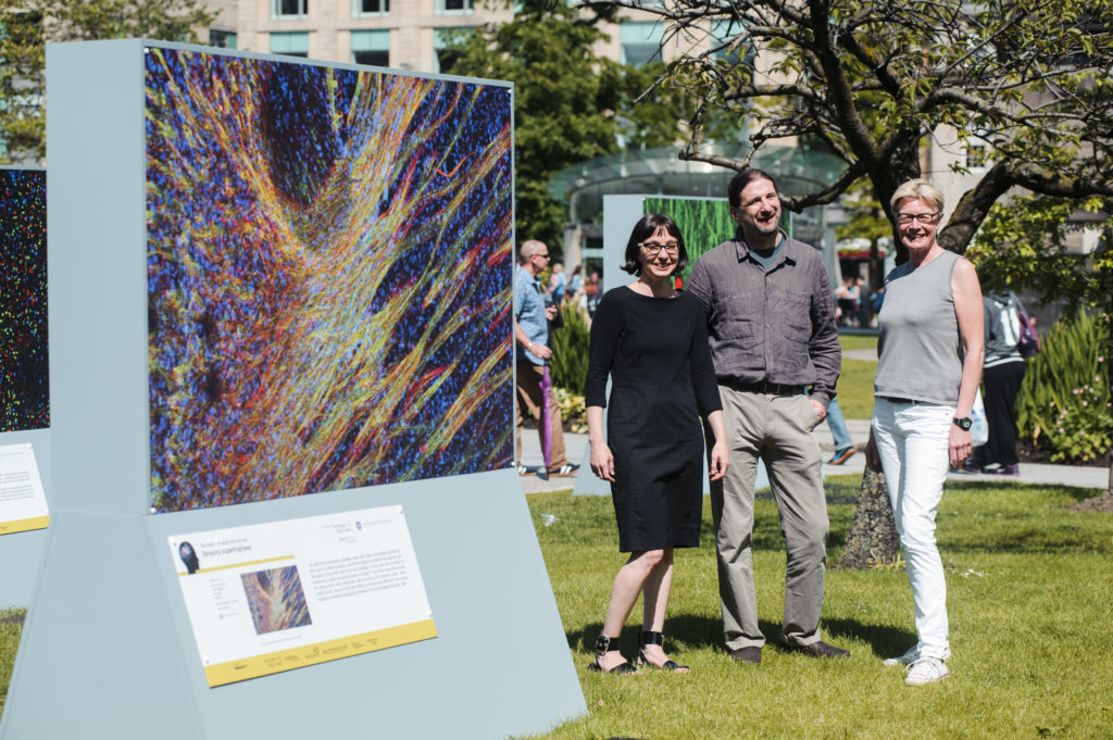 "EDINBURGH, UK - June 2014: Bold and striking images capturing the beauty and complexity of the brain have gone on display in St Andrew Square, Edinburgh, showcasing world leading research by scientists at the University of Edinburgh. The exhibition titled ""The brain - is wider than the sky"" seeks to improve our understanding of the brain and how it is damaged in people with learning disabilities and other neurological conditions. Pictured Peter Kind, Professor of Developmental Neuroscience talks with Sophie Dow (grey top), founder of Mindroom and co-curator of the exhibition and Dr Sally Till, Centre for Integrative Physiology, next to a picture showing a sensory superhighway where information is carried to the cerebral cortex.(Photograph: MAVERICK PHOTO AGENCY)"